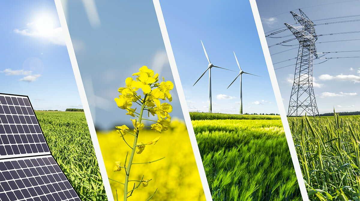 Grøn Omstilling Med Solceller
